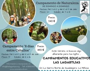 Campamentos Educativos Las Lagartijas (2)
